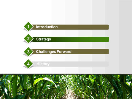 Corn Field PowerPoint Template, Slide 3, 09838, Agriculture — PoweredTemplate.com