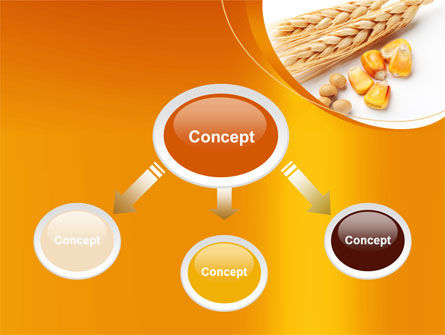 Spikes Of Cereal PowerPoint Template, Slide 4, 09854, Agriculture — PoweredTemplate.com