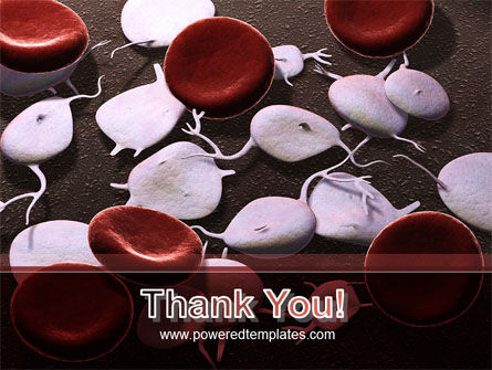 Red And White Blood Cells PowerPoint Template Slide 20