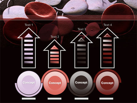 Red And White Blood Cells PowerPoint Template Slide 7