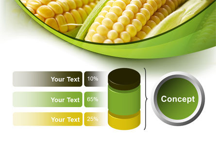 New Crop Of Maize PowerPoint Template Slide 11