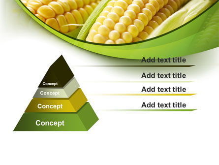 New Crop Of Maize PowerPoint Template Slide 12