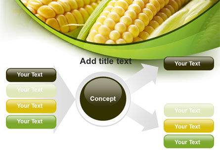 New Crop Of Maize PowerPoint Template Slide 14