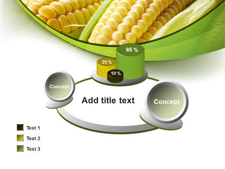 New Crop Of Maize PowerPoint Template Slide 16