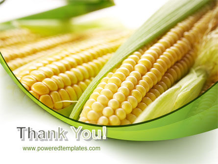 New Crop Of Maize PowerPoint Template Slide 20