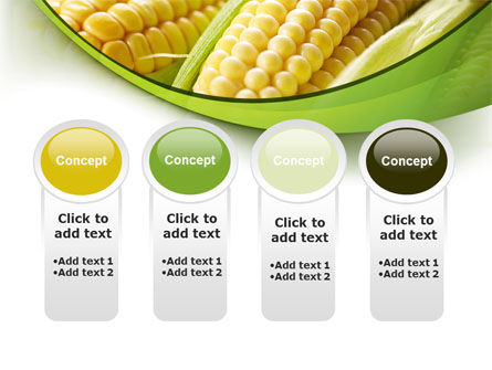 New Crop Of Maize PowerPoint Template Slide 5