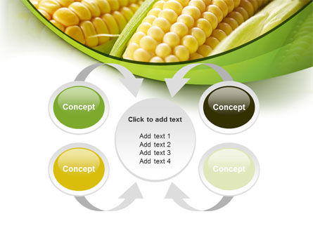 New Crop Of Maize PowerPoint Template Slide 6