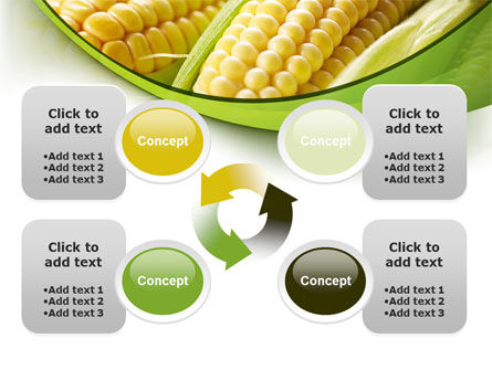 New Crop Of Maize PowerPoint Template Slide 9