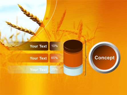 Golden Ear Of The Wheat PowerPoint Template Slide 11