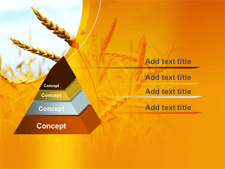 Golden Ear Of The Wheat PowerPoint Template Slide 12