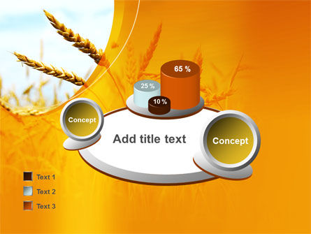 Golden Ear Of The Wheat PowerPoint Template Slide 16