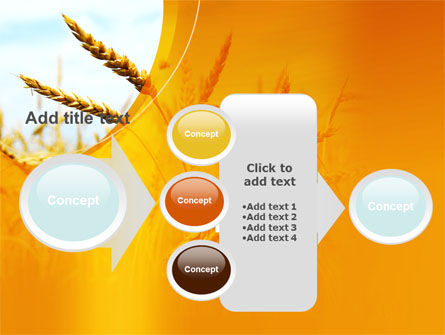 Golden Ear Of The Wheat PowerPoint Template Slide 17