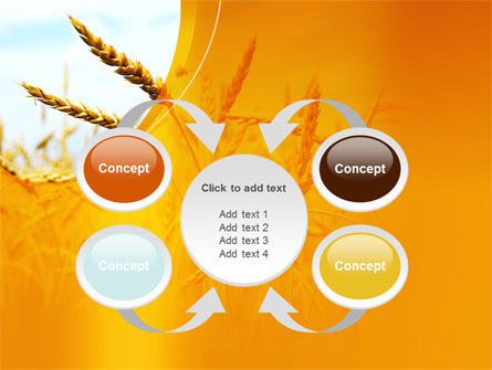 Golden Ear Of The Wheat PowerPoint Template Slide 6