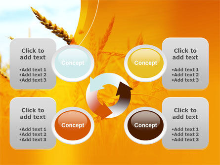 Golden Ear Of The Wheat PowerPoint Template Slide 9