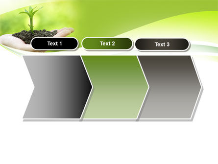 Plant Growth PowerPoint Template Slide 16
