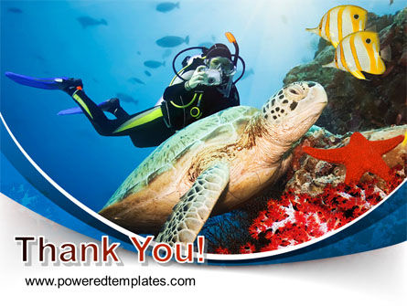 Diving Photo Shooting PowerPoint Template Slide 20