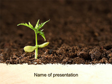 Agriculture: Braird PowerPoint Template #10099