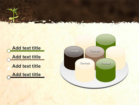 Braird PowerPoint Template Slide 12