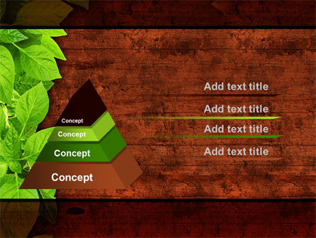 Wooden Surface PowerPoint Template Slide 12