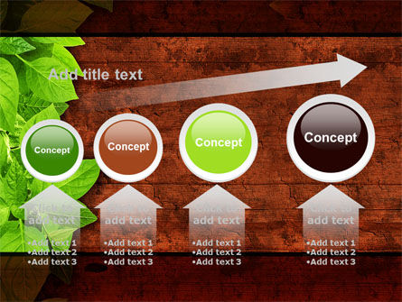 Wooden Surface PowerPoint Template Slide 13