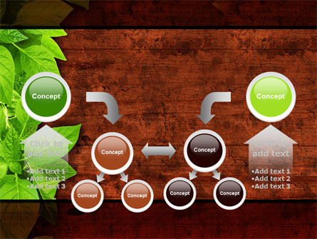 Wooden Surface PowerPoint Template Slide 19