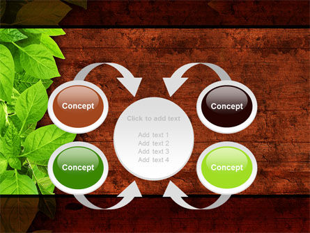 Wooden Surface PowerPoint Template Slide 6