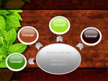 Wooden Surface PowerPoint Template Slide 7