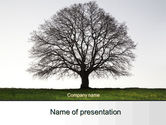 Nature & Environment: Tree Without Leaves PowerPoint Template #10133