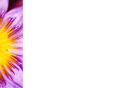 Blossoming Flower PowerPoint Template, Slide 3, 10167, Nature & Environment — PoweredTemplate.com