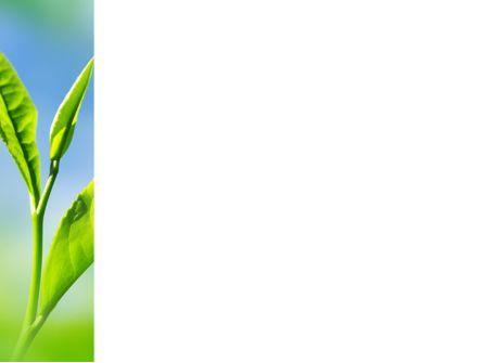 Fresh Sprouts PowerPoint Template, Slide 3, 10174, Nature & Environment — PoweredTemplate.com