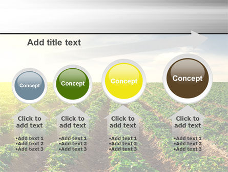 Agriculture PowerPoint Template Slide 13