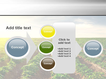 Agriculture PowerPoint Template Slide 17