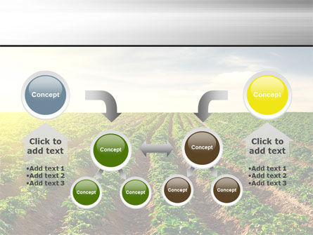 Agriculture PowerPoint Template Slide 19