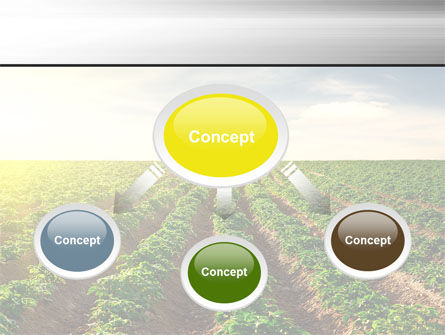 Agriculture PowerPoint Template Slide 4