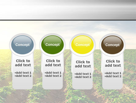 Agriculture PowerPoint Template Slide 5