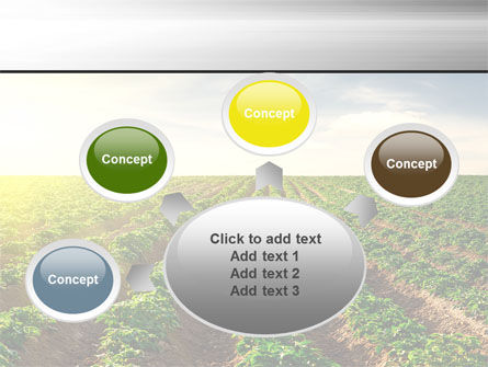 Agriculture PowerPoint Template Slide 7
