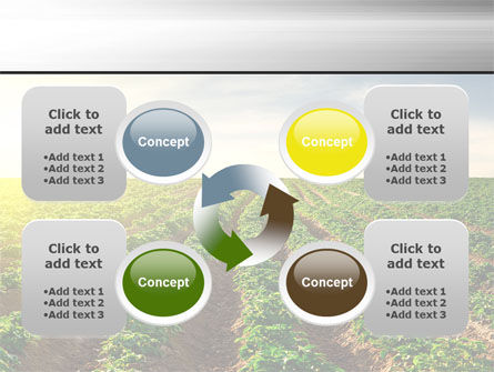 Agriculture PowerPoint Template Slide 9