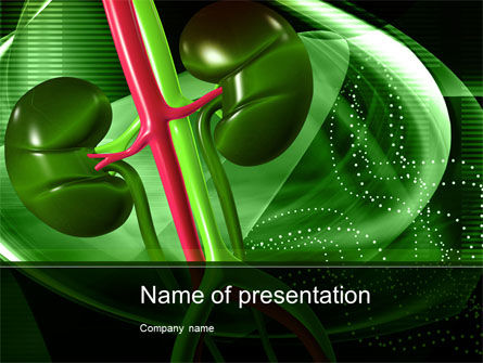 Medical: Human Kidneys PowerPoint Template #10363