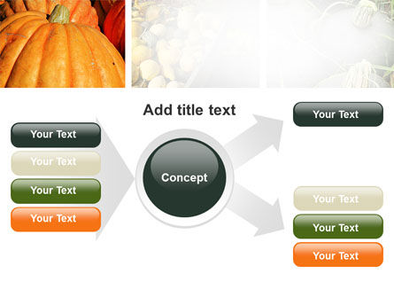 Pumpkin PowerPoint Template Slide 14
