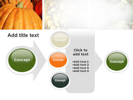 Pumpkin PowerPoint Template Slide 17