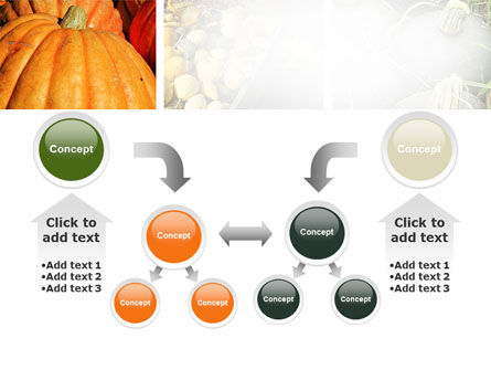 Pumpkin PowerPoint Template Slide 19