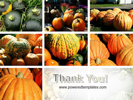 Pumpkin PowerPoint Template Slide 20