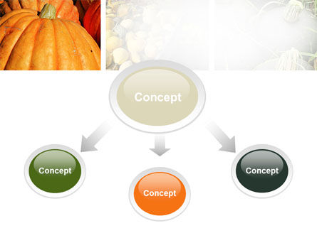 Pumpkin PowerPoint Template Slide 4