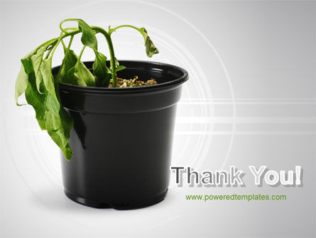 Withered Plant PowerPoint Template Slide 20
