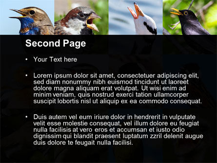 Birds PowerPoint Template, Slide 2, 10528, Education & Training — PoweredTemplate.com