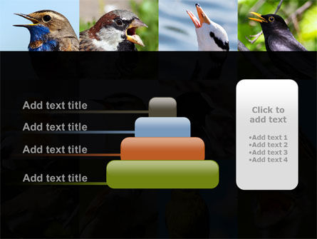 Birds PowerPoint Template Slide 8