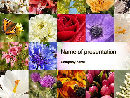 Careers/Industry: Variety of Flowers PowerPoint Template #10597