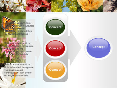 Variety of Flowers PowerPoint Template Slide 11