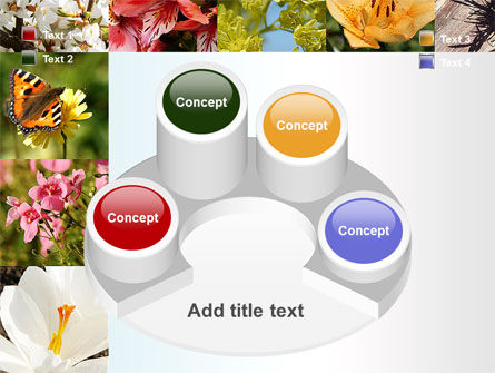 Variety of Flowers PowerPoint Template Slide 12