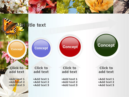 Variety of Flowers PowerPoint Template Slide 13